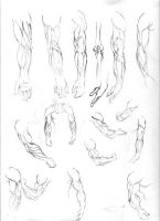 figure drawing studies - arms by achaye