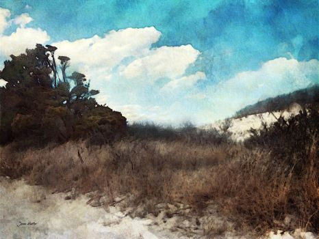 The Sand Dune by jhutter