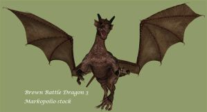 Brown Dragon 3 - Feb 17 08 by markopolio-stock