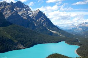 Peyto Lake by dkao