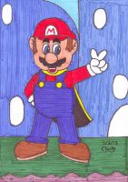 Marker Mario World by N64chick