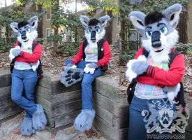 Calhoun Wolf Partial Suit by LobitaWorks