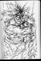 Blanka rough by dogmeatsausage