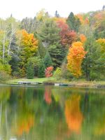 Autumn Reflections by caybeach