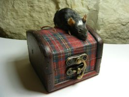 Etsy Mouse with Box by CVDart1990