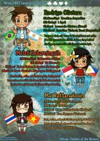 Hetalia NEXT Generation Profile 5 by BlueStorm-Studio