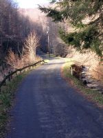 Country Road by toolameforsociety
