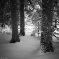 Cold Outside by FlorentCourty
