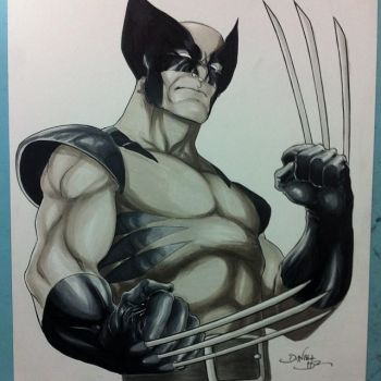 Wolverine - commission by danielhdr