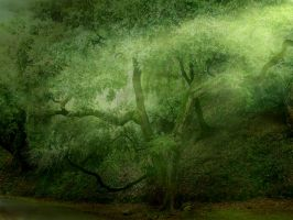Emerald Tree Background by AngelaHolmesStock