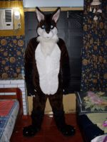 My first fursuit OrlandoWolf the Maned Wolf by jlfurry