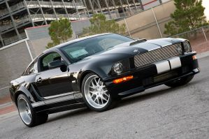 2007 Shelby GT Widebody by StrayShadows
