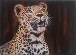 ACEO -  Leopard - acrylics by Giselle-M