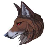 Coyote by Wavyrr