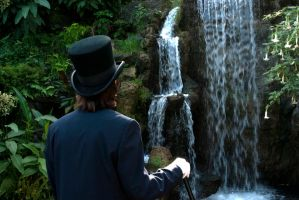 Memoirs the Waterfall by tehMiA