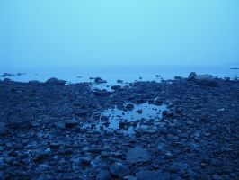 The Cold Shore by Glandrid