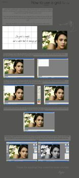 How to use a grid Part 1 by reylia