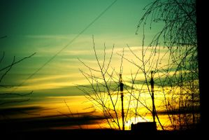zep sunset. by torny