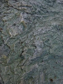 Stone Texture 2 by WoodsieWood