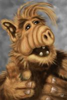 Alf by Berilia