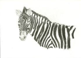 White with black stripes by Victoriaa1