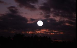 moon on sunset by andzejek