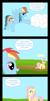 Fluttershy and Rainbow Dash Reunion by CuriousPony