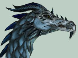 Skyrim Dragon by cammycat99