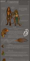 Chiirathi Species Sheet by TaesoSpiritDragon