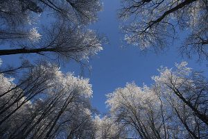 Plitvice: blue and white by Ilharess