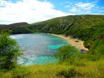 Fish Galore! [Hawaii-Hanauma Bay] by RunaFire