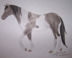 Real Horses--Dolce by Raiha