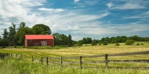 New York Country by jnati
