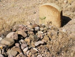 Allison's Tombstone by CharlesNissen