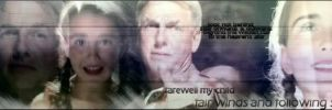Gibbs Farewell by atlantisflygirl86