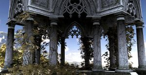 Resting Place by Platycerium