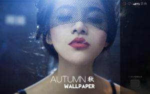 Shin ARTS - Autumn 2012 Wallpaper by ShinDatenshi