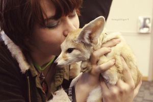 Kissing a Fox by BengalTiger4