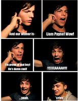 Megamind: One Direction (Part Two) by NevilleLongbottom26