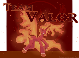 Team Valor by michielynn