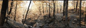 Brock Hill Panorama Infrared by Dani-Lefrancois