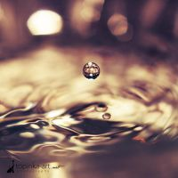 .waterdrop. by topinka