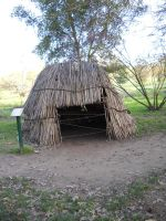 Native Hut - Frontside by shaych03