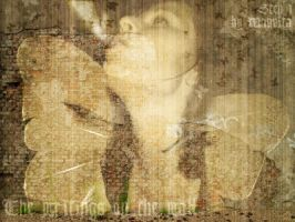 The writings on the wall by Maquita
