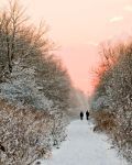 Snow Walk Sundown by paulblythe