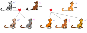 Warrior Cats - Family Tree Adopts - *OPEN* by Adopting-Angels