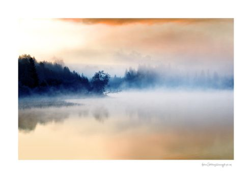 The sound of solitude by Stridsberg
