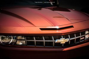 Camaro Grille by AmericanMuscle
