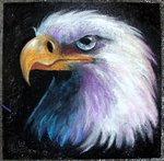 Street Chalk Bald Eagle by charfade