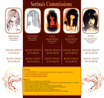 Commission Guide by Sorina-chan